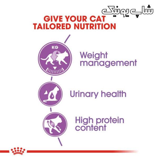 تغذیه مناسب با غذای خشک گربه رویال کنین استرلایز مدل Regular Sterilised