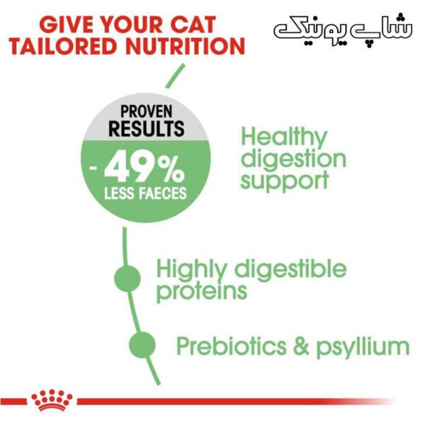 تغذیه مناسب با غذای خشک گربه رویال کنین دایجستیو مدل Digestive Care