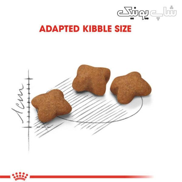 سایز کوچک غذای خشک گربه رویال کنین استرلایز مدل Kitten Sterilised