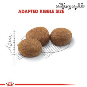 سایز کوچک غذای خشک گربه رویال کنین استرلایز مدل Regular Sterilised