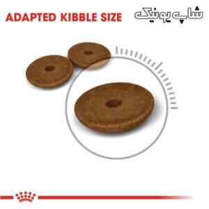 سایز کوچک غذای خشک گربه رویال کنین دایجستیو مدل Digestive Care