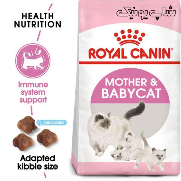 سلامت گوارش با غذای خشک گربه رویال کنین مادر اند بیبی مدل Mother & Babycat