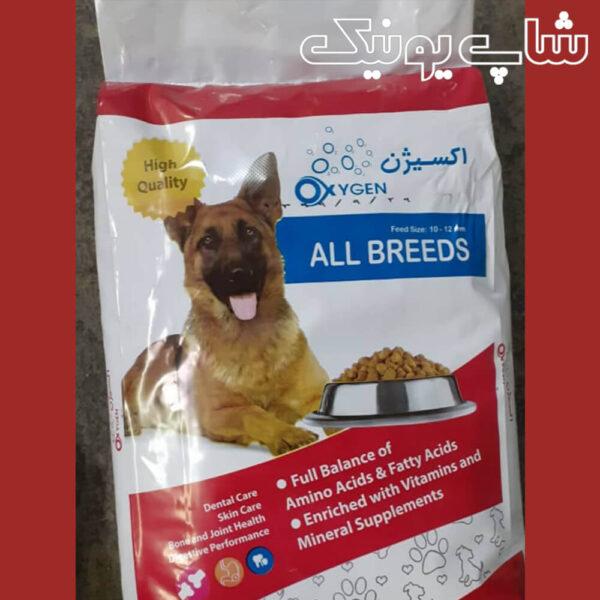 غذای ایرانی سگ