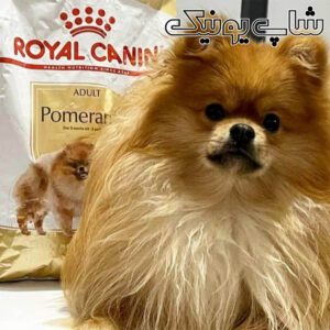 غذای سگ پامرانین رویال کنین (1)